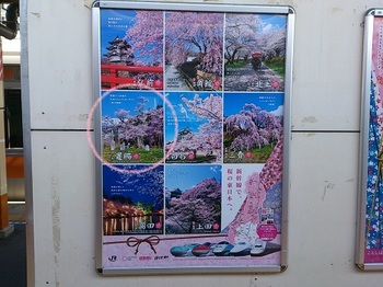 JR east sakura.jpg